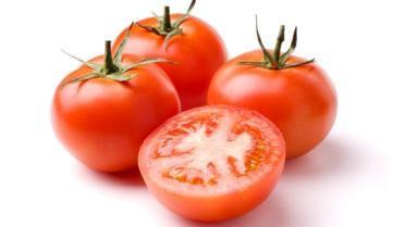 Tomaten - Lovendegem Online