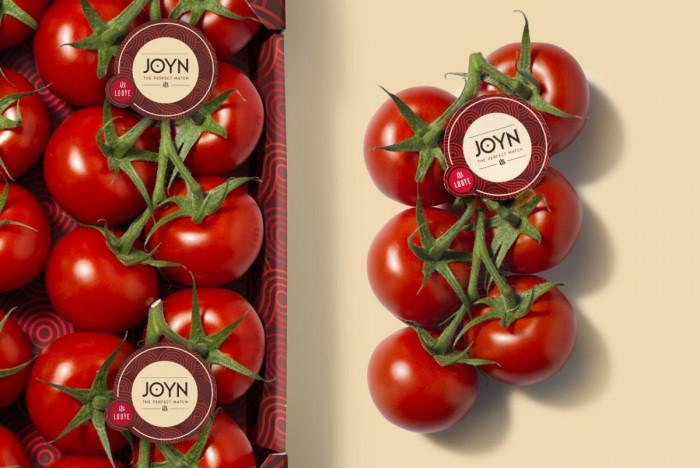 Joyn-tomaat  - Lovendegem Online
